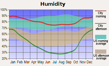 Placerville Average Humidity